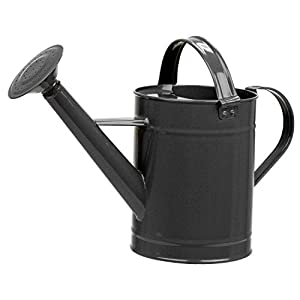 Asvert Metal Watering Can Modern Anti-Rust Watering Pot with Long Spout for Indoor Outdoor House Plants Watering Use 0…