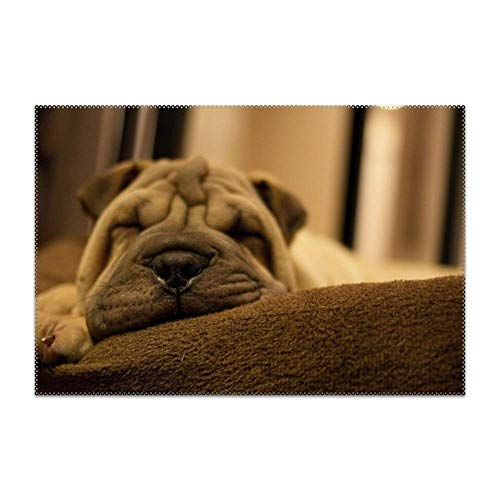 POGResdx Non-Slip Insulation Sleeping Shar Pei Puppy Placemat Washable Table Mats Easy to Clean 4 Pieces