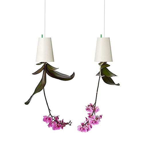 SYOOY 2 PCS Upside-Down Planter Hanging Flower Pot Planter for Balcony Garden Home Decoration - Orchid Garden