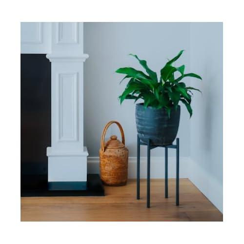 tall metal plant stand. Black Bedroom Furniture Sets. Home Design Ideas