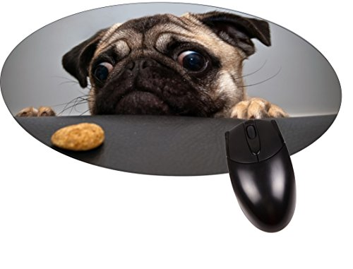 Price comparison product image Pug Wants a Cookie- Round Mouse pad - Stylish,  durable office accessory and gift