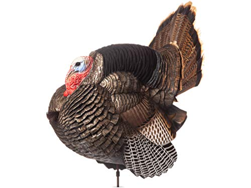 Dave Smith Full Strut Jake Turkey Decoy