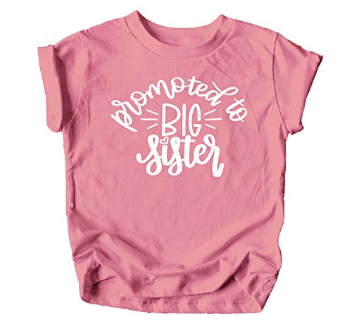 Olive Loves Apple Promoted to Big Sister Colorful Announcement T-Shirt for Baby and Toddler Girls Sibling Outfits Mauve Shirt