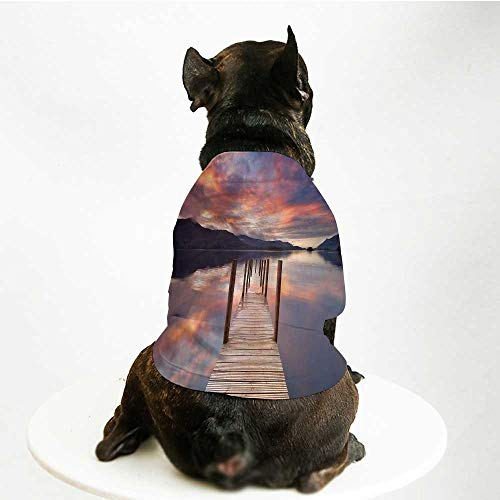 YOLIYANA Landscape Custom Pet Suit,A Flooded Jetty in Derwent Water Lake District England Sunset Morning Photo for Cats and Dogs,M -