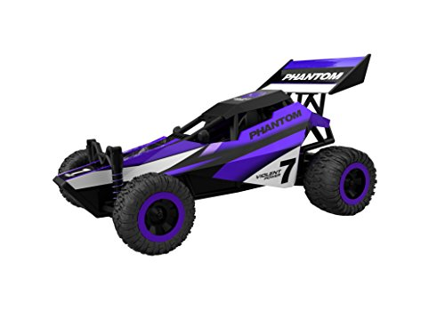 Rc Car,KingPow 1:32 Scale Mini 2WD High Speed Truck With Wireless Remote Control Vehicle Rc Car(Small Size)-Purple