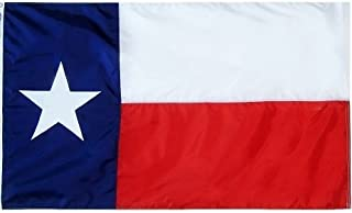product image for All Star Flags 3x5' Texas Heavy Weight Nylon Flag from