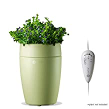 Puzhen Sprout Essential Oil Ultrasonic Aroma Diffuser (PZ-UA05G), Green