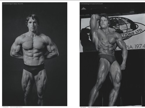 Set of 2 Bodybuilding Posters Arnold Schwarzenegger