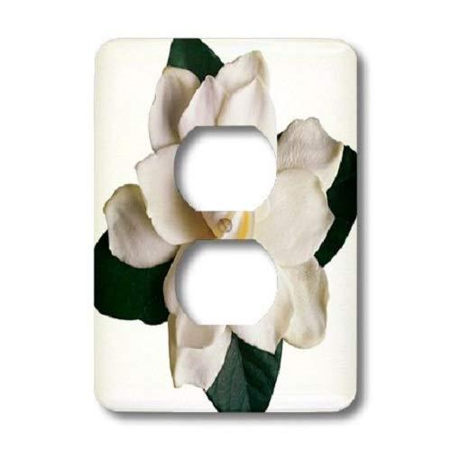 3dRose lsp_16811_6 Gardenia Outlet Cover - Gardenia Clock Plate