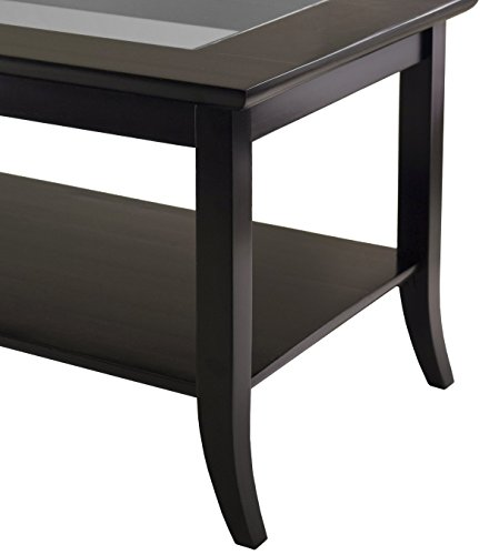 winsome genoa rectangular coffee table with glass top and shelf. Black Bedroom Furniture Sets. Home Design Ideas