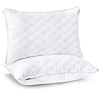 Bed Pillows for Sleeping,Hotel Quality Pillows with Premium Plush Fiber,Sleeping Pillows for Side and Back Sleeper (Queen)