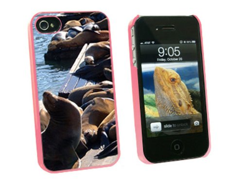 Graphics and More San Francisco Sea Lions - Pier 39 Fisherman's Wharf - Snap On Hard Protective Case for Apple iPhone 4 4S - Pink - Carrying Case - Non-Retail - 39 Pier Shops
