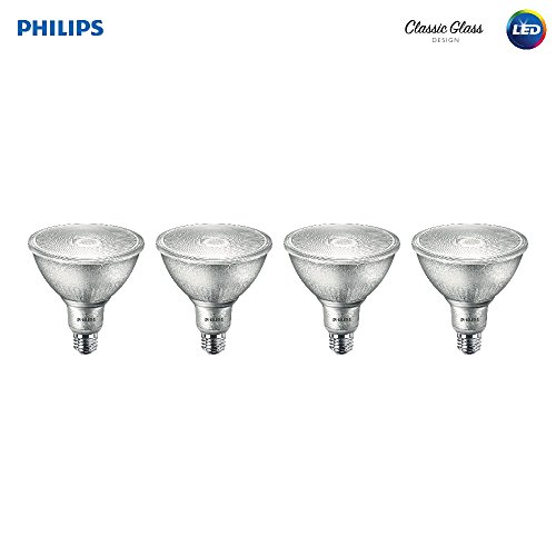 Philips 120 Watt Indoor Flood Light