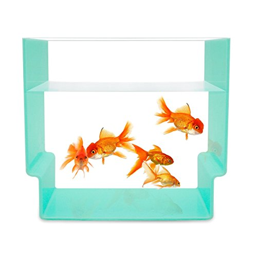 1.7 Gallon Fish Tank,Betta Bowl for Desk,Aquarium Fish Tank,Add a View for Home or Office Desk – SupperAcrylic