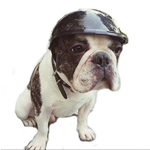Stock Show Dog Helmet, 1Pc Funny Cool Pet Doggie Motorcycles Bike Helmet Cap Hat for Sun Rain Protection Cats Puppy Cute Helmet Hat Coustume for Small Medium Cats Dogs, Black -