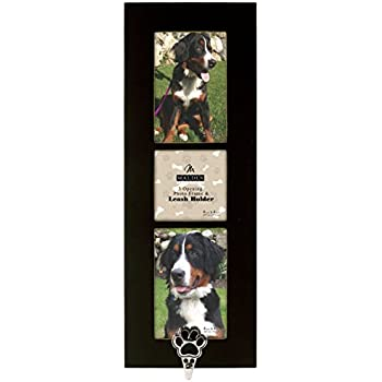 Amazon.com - Malden International Designs Pet Hook Die Cast Paw 3 ...