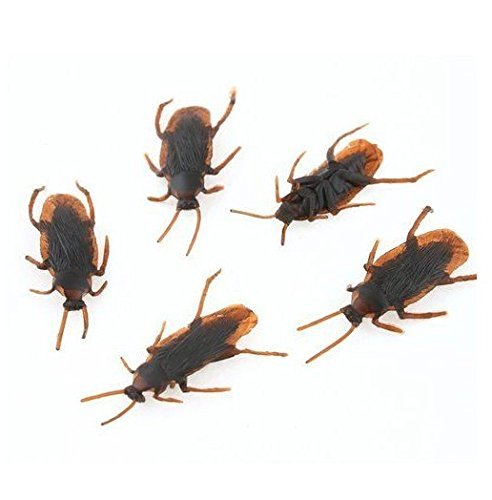 HOPU Simulation Rubber Toys Cockroach Roach scary Bug Halloween Pack of 10 PC (Cheap Costume Ideas Halloween)