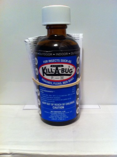 Kill-A-Bug Indoor/Outdoor spray for roaches, bedbugs, fle...