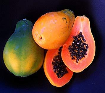 50+ Very Fresh! Strawberry Papaya! tropical fruit tree seeds plant VERY EASY!