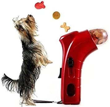 Takestop® - Juego de adiestramiento para perros y gatos: Amazon.es ...