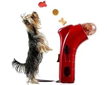 Takestop® - Juego de adiestramiento para perros y gatos: Amazon.es: Electrónica