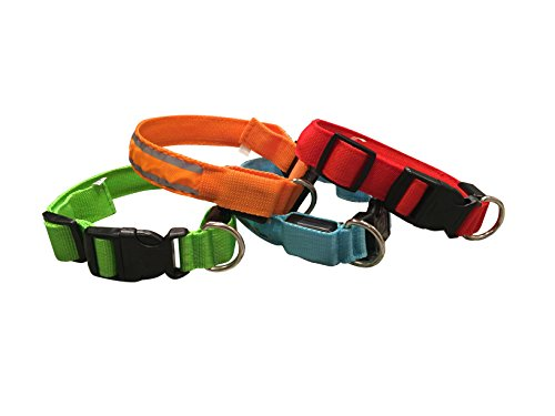 extra small neon dog collar - 4