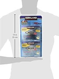 Kirkland Signature Quit Smoking Gum, 4 mg, 380 Count