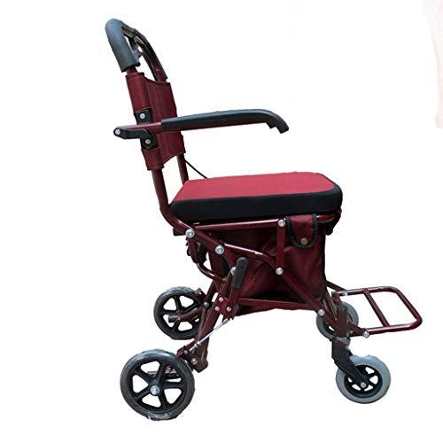 Older Can Push Sit Leisure Scooter Light Walker ()