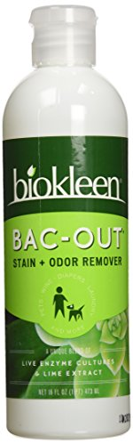 Biokleen: Bac Out Stain&Odor Eliminator, 16 oz