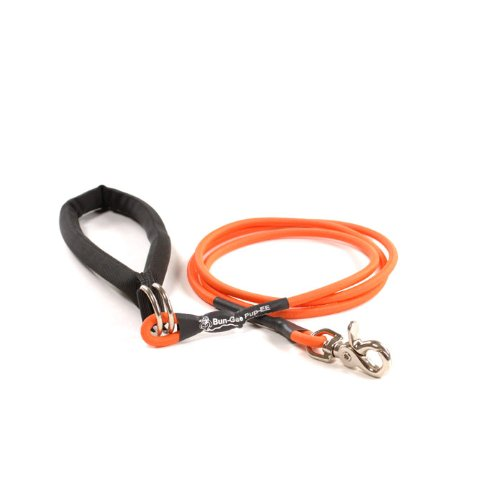 (Bungee Pupee 6-Feet Up to 25-Pound Small Dog Leash, Red)