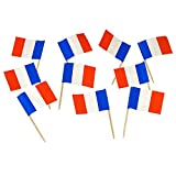 France %7C French Flag Toothpicks %28100...