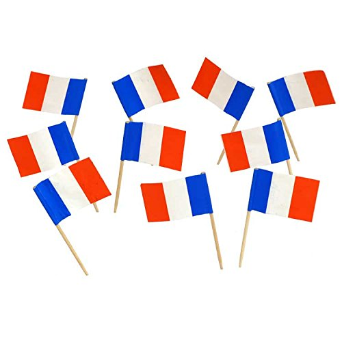 France | French Flag Toothpicks (100) Flags! Georgia