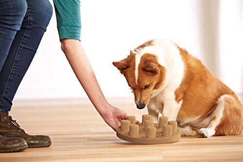 Nina Ottosson Outward Hound Dog Puzzle Toy Dog Game 2