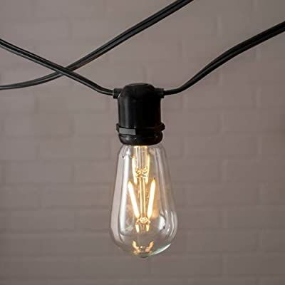 Commercial Edison String Lights, ST58 Dimmable LED, 106ft Black Wire, Warm White