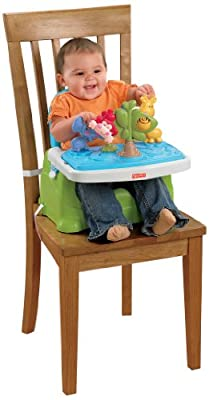 Fisher-Price Discover 'n Grow Busy Baby Booster by Fisher-Price