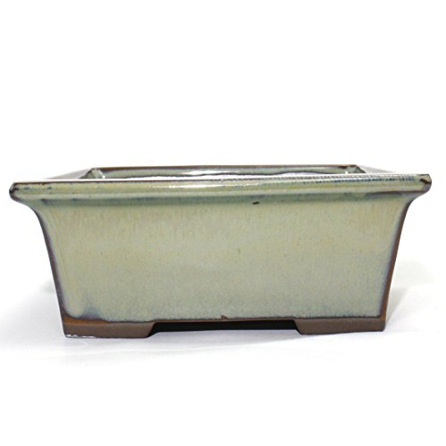 Bonsai Pot Ceramic Rectangle Glazed (5.25, Oribe-Yu)