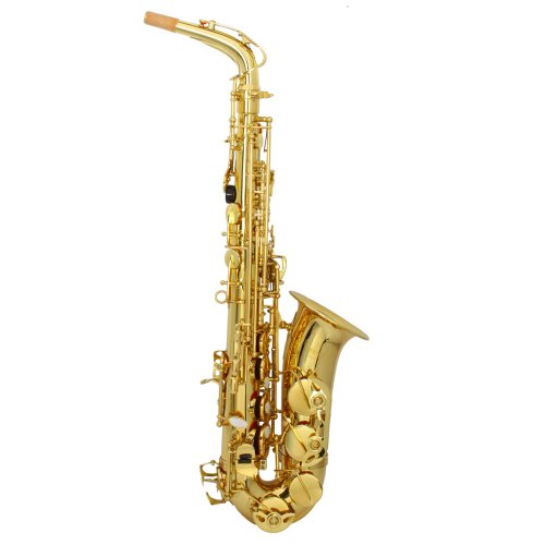 MCH Professional Alto Drop E Saxophone Gold, Alto Saxophone with Zippered Hard Case + Mouth Piece + Reeds +3 Aglet