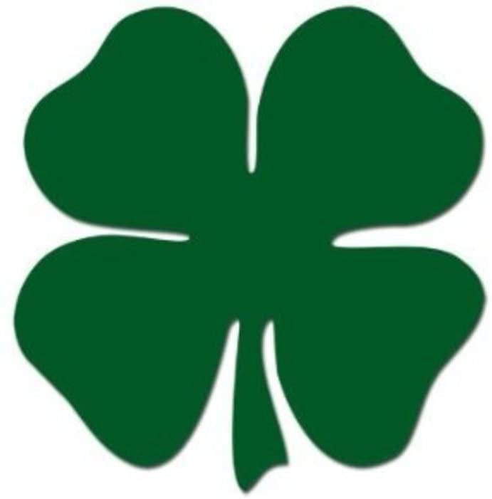 Amazon Com Keen Shamrock 4 Leaf Clover Decal Vinyl Sticker Cars Trucks Walls Laptop Green 5 In Kcd479 Automotive