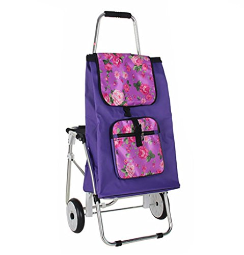 G&M Trolley Dolly with Seat, Shopping Grocery Foldable Cart Tailgate Lightweight Laundry, Shopping, Grocery , D by RulNet