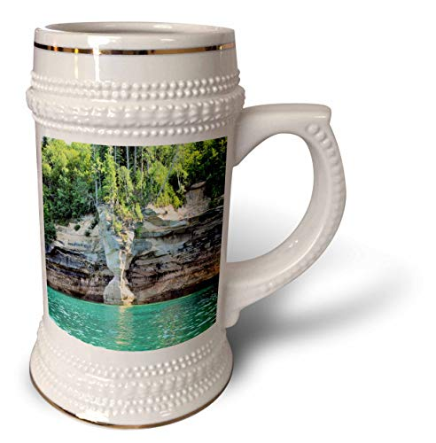 (3dRose Dreamscapes by Leslie - Scenery - Sandstone Vase - 22oz Stein Mug (stn_314278_1))