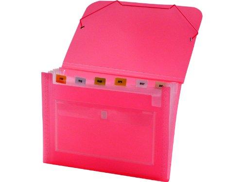 Lion Clear-Line 7-Pocket Poly Expanding File, Transparent Pink (94500-PK)