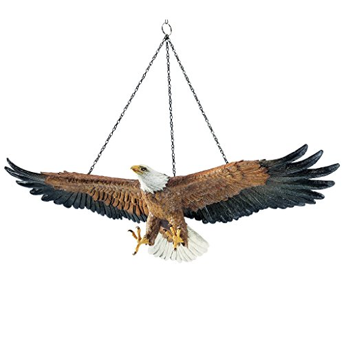 - Design Toscano Flight of Freedom American Bald Eagle Hanging Bird Statue, 19 Inch, Polyresin, Full Color