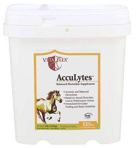Vita Flex AccuLytes Complete Electrolyte Formula, 53 Day Supply, 5 lbs by Vita Flex (Image #4)