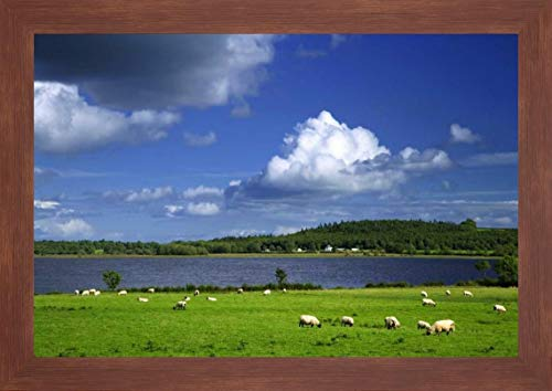Ireland, Co Roscommon Pastoral Scene of Lake by Dennis Flaherty - 12