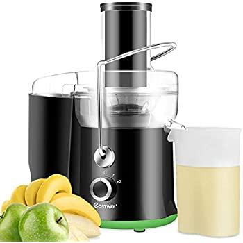 COSTWAY Juice Extractor, 65MM Wide Mouth Stainless Steel Juicer Machines, 2-Speed Setting High Speed Masticating Juicer Machine for Fruits and Vegetable ...