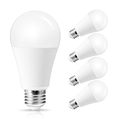 TechgoMade LED 100W Equivalent A19 Light Bulb, LED Low voltage AC/DC 12V, Daylight White 5000K, E26 Medium Base, 10W 1000Lumens, A19 Shape Light Bulb for Home Lighting(4 Pack)