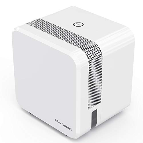 Electric Mini Dehumidifier for Home, 1200 Cubic Feet(215 sq ft), 22oz Capacity Compact and Portable Small Dehumidifiers with Two Mode, Ultra Quiet Auto-Off Dehumidifiers for Bedroom, Closet, Kitchen