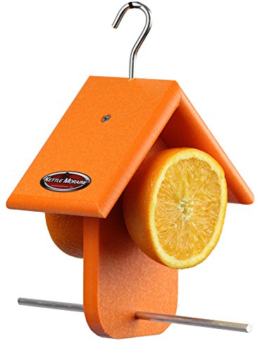 (Kettle Moraine Recycled Single Oriole Orange Fruit Feeder)
