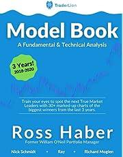 TraderLion Model Book: A Fundamental & Technical Analysis