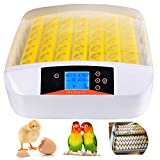 Aceshin Automatic 56 Digital Egg Incubator Turning Temperature Control, Poultry Hatcher for Chickens
